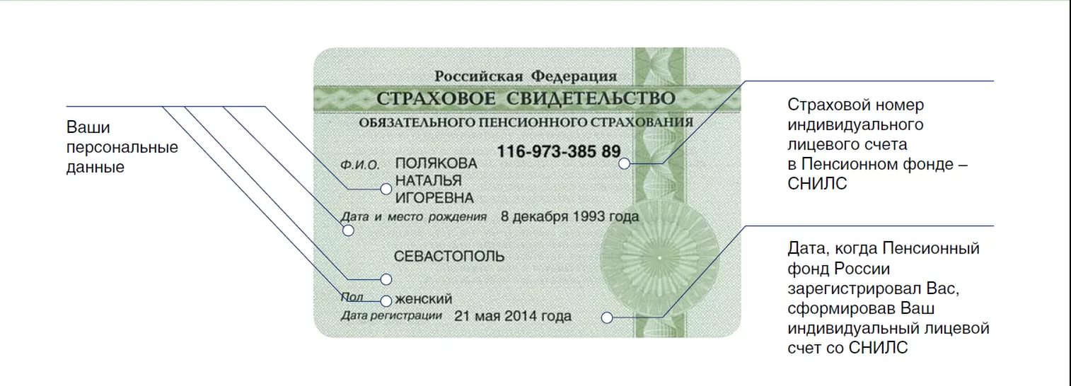 СНИЛС иностранного гражданина: СНИЛС белорусу, как получить?